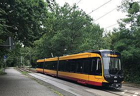Eine Niederflurbahn der VBK fährt durch einen bewaldeten Streckenabschnitt in richtung Rappenwört.