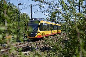 AVG-Stadtbahn auf einem Streckenabschnitt bei Heilbronn. neben den Gleisen wachsen grüne Sträucher.