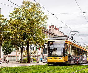 Eine Bahn der Linie S2 fährt über ein Rasengleis. Links von der Bahn steht ein grüner Baum.